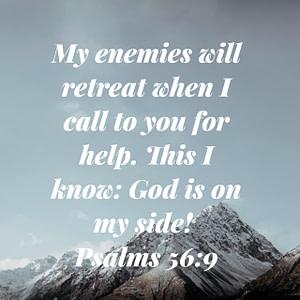 Psalm 56:9 Bible Verse Image